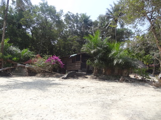 Tito's Paradise